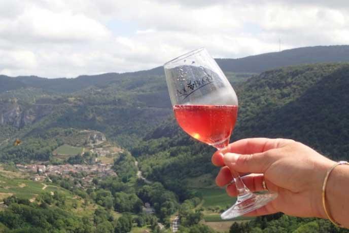 Dégustation du vin de Cerdon